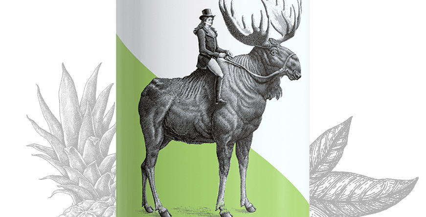 Archer Roose Sauvignon Blanc 4-pack