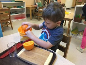 Montessori In Your Home: Preschool Edition