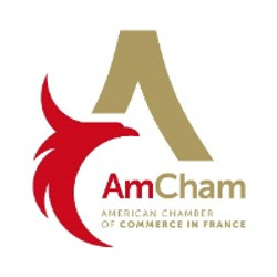 Amer chamber France icon 2