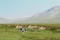 denali-national-park-family-hike-landscape.jpg
