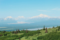 denali-national-park-family-hike-landscape.jpg