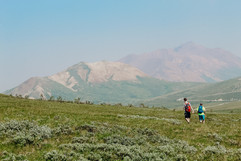 denali-national-park-hiker-landscape.jpg