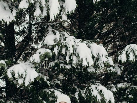Manassas, Virginia || First Snow