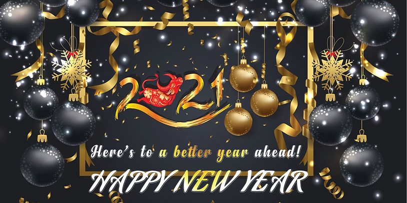 WIX NEWSLETTER BANNER HNY.png