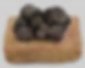 truffe noire d'hiver