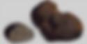 truffe noir au moscato
