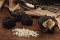 truffe noire d'été