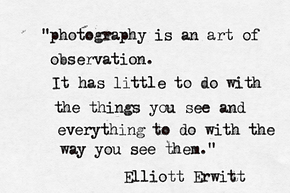 Elliott Erwitt Photo Quote