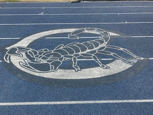 True Blue Donation - Track and Field