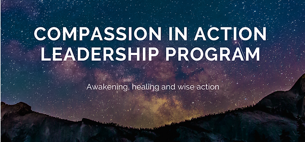 compassion in action leadership program.png