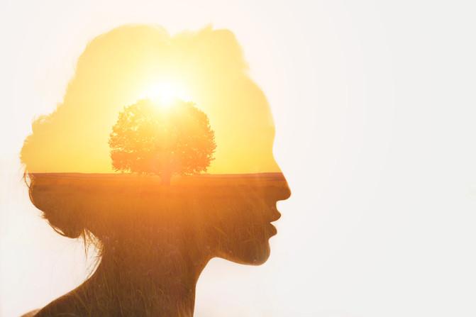 Autoconhecimento – um enigma decifrável