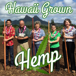 We're Creating a new Hemp Industry in Hawai'i!