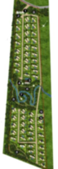 plano web numeros.jpg