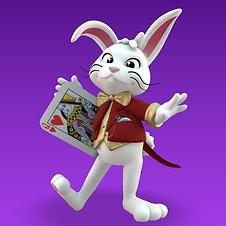 Rabbit Render for Wix Thumbnail.png