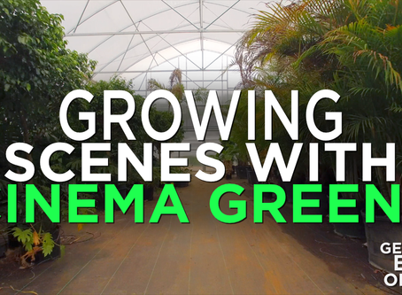 Jungles, Forests and Weed: Plants in Film with Cinema Greens