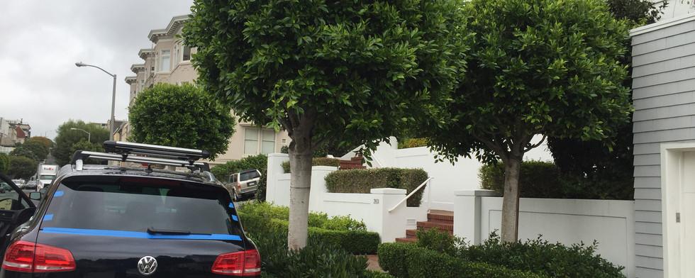 Toureg VW Back Glass.JPG