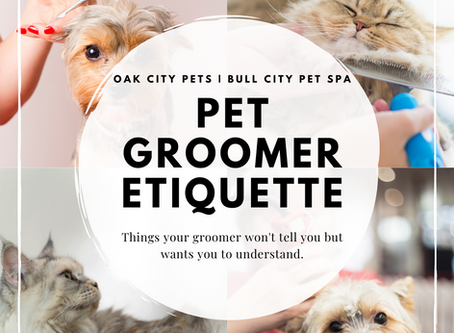 How to Become Your Groomer's Favorite Guest
