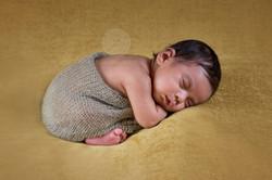 best newborn photographer in trichur