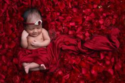 newborn photographer kochi