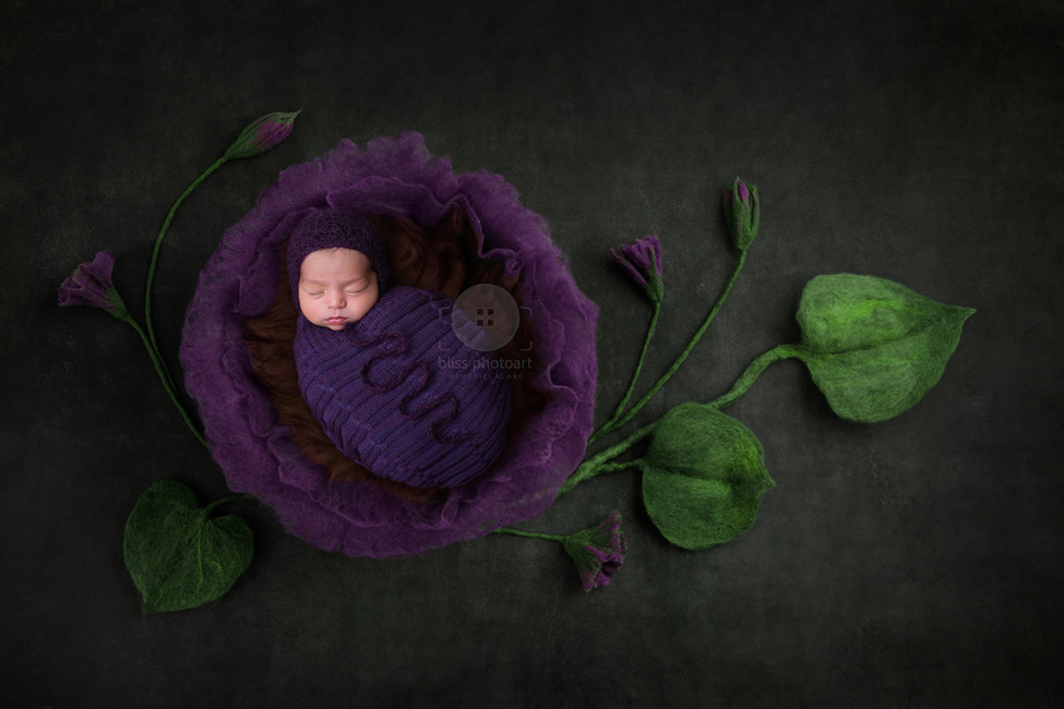 bliss photoart_newborn-22.jpg