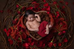 newborn photography kochi