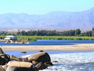 Diputado Raúl Saldívar (PS) pidió que Laguna Saladita de Punta Teatinos sea declarada como Reserva N