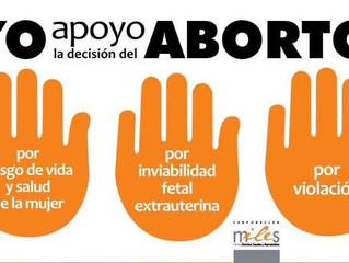 """Raúl Saldívar (PS):""""Luego de más de dos décadas la mujer tiene derecho a decidir sobre su cuer"""