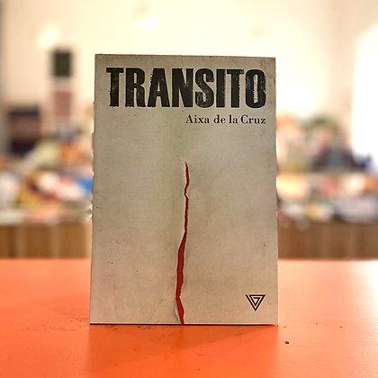 Transito - Giulio Perrone Editore