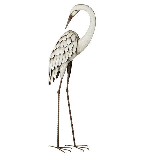 Preening Egret