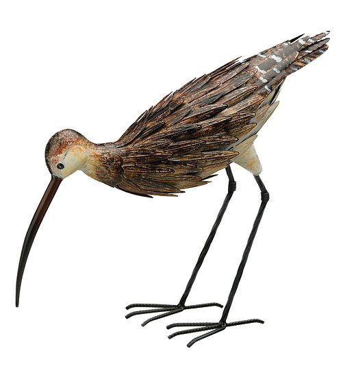 Curlew Down