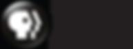 PBS America Logo.png