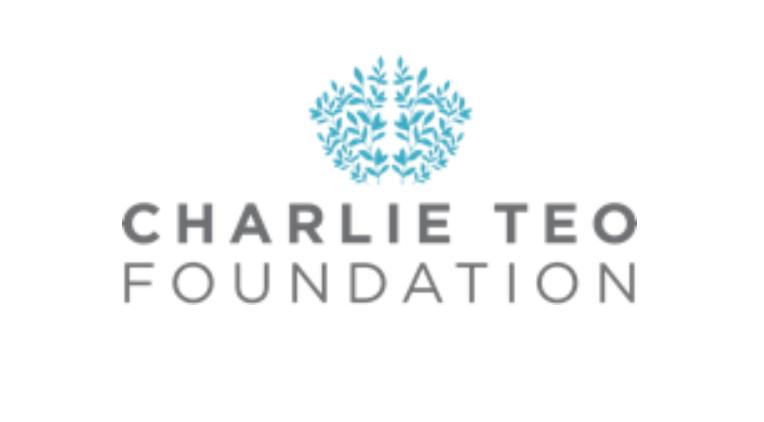 Charlie Teo Foundation Logo
