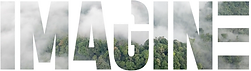 IMAGINE Logo.png