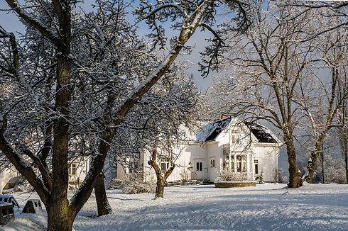 Vinter 0 low res.jpg