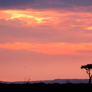 Great Zimbabwe (NO LONGER IN) ruins