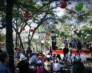 The Miombo Magic Music Festival