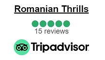 tripadvisor review.png