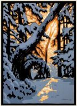 Winter Woods IV