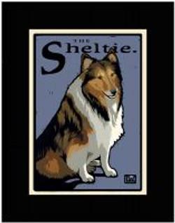 The Sheltie