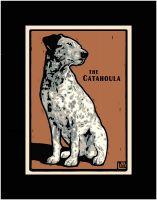 The Catahoula