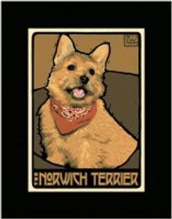 The Norwich Terrior