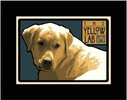 The Yellow Lab