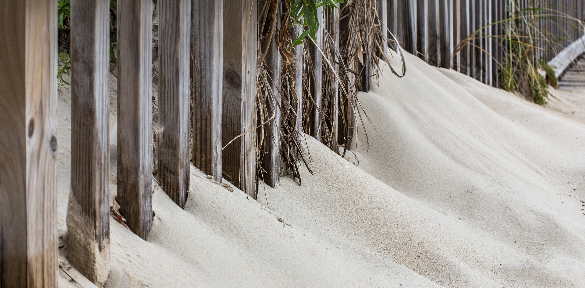The movement of Sand-1.jpg
