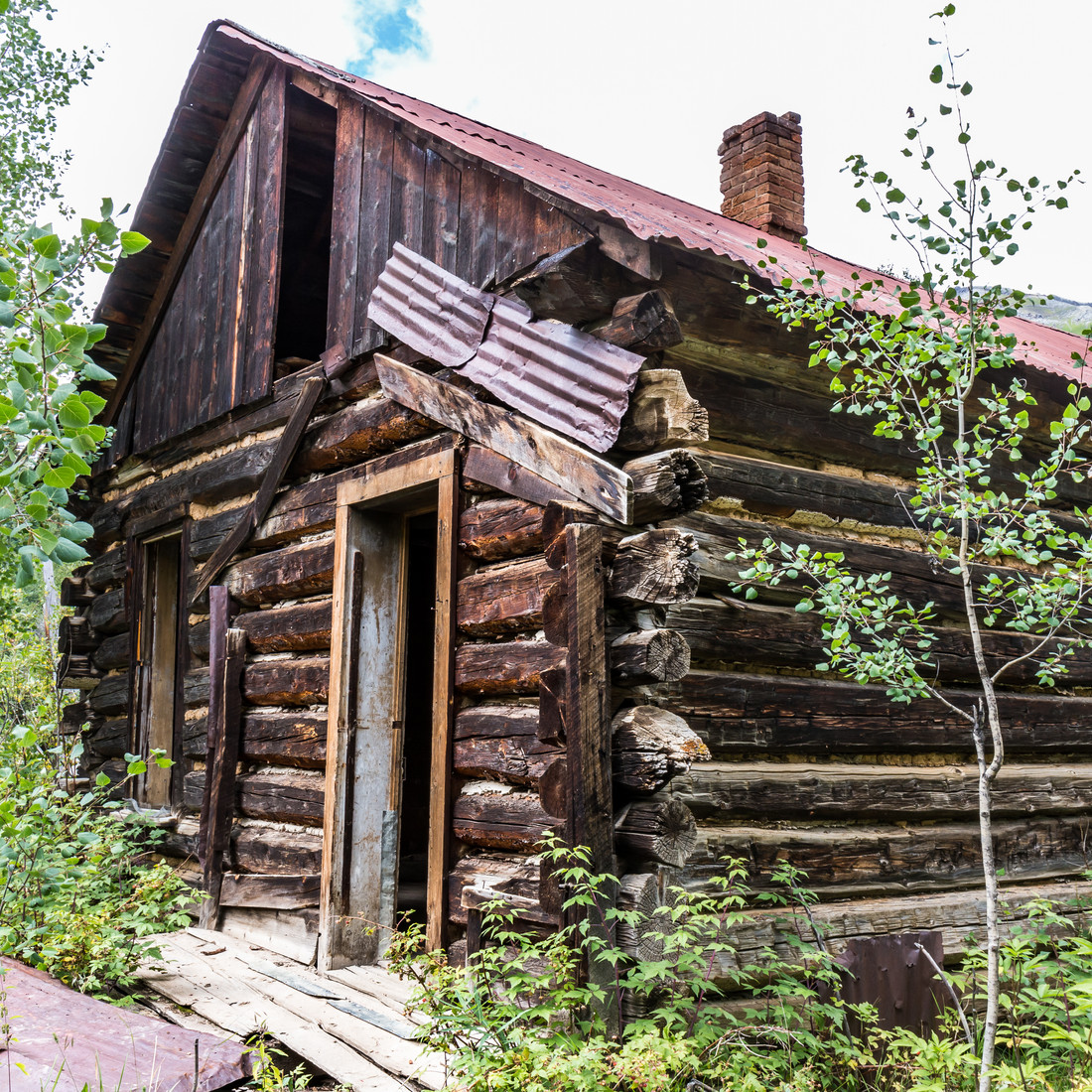 Cabin in the Woods 11X14.jpg