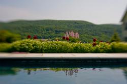 Pool & Mountain Views