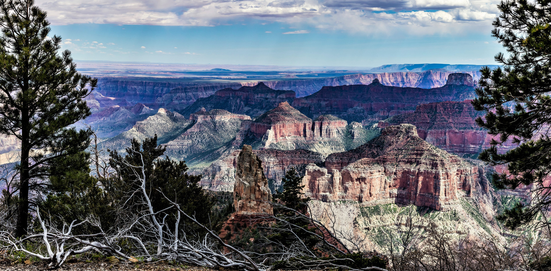 A Canyon of Grandeur.jpg