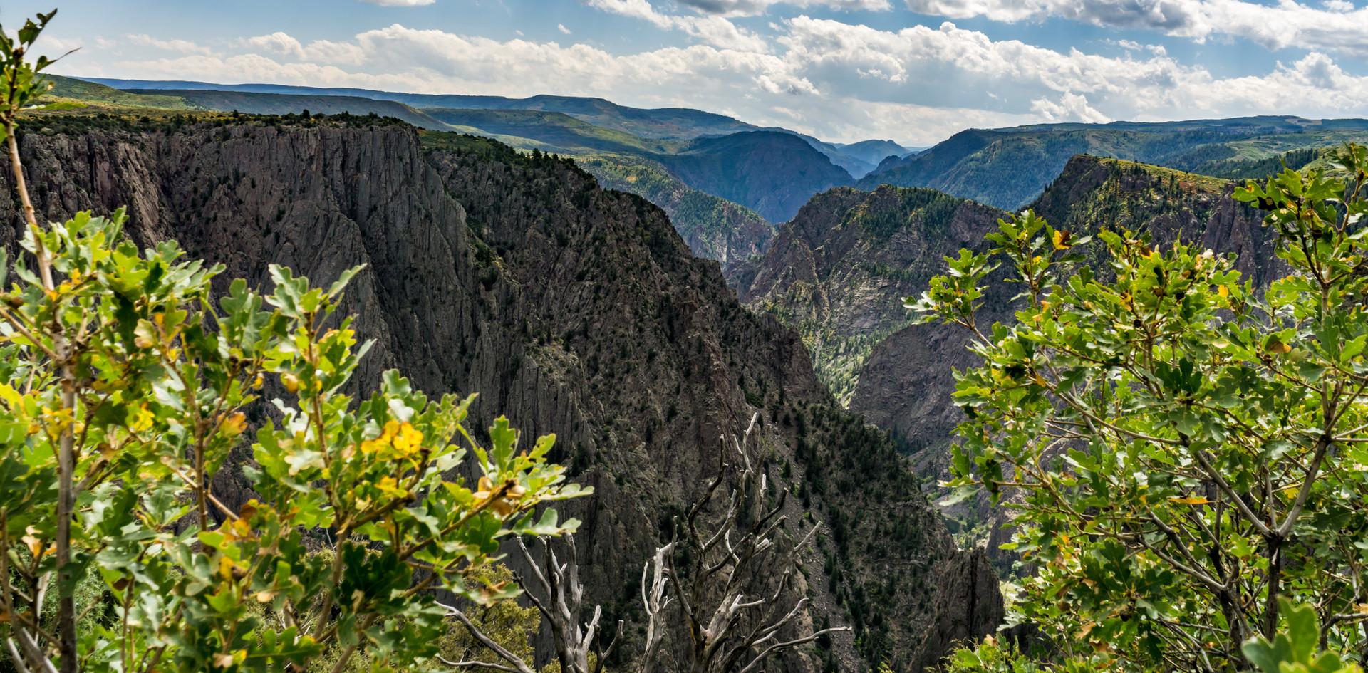 Blacks Canyon Vista.jpg
