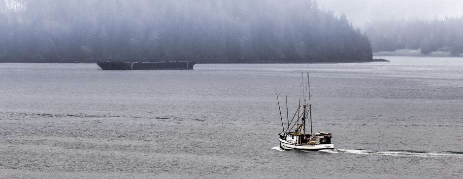 Into the fog - Icey Strait Point, Alaska-2.jpg