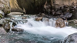 Canyon Creek -1.jpg