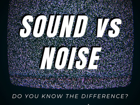 Why Noise matters with Dr. Arline Bronzaft